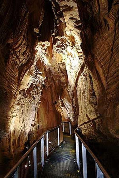 Это написал профессор Джоаким Иллиес, который наблюдал за биологическим феноменом Новой Зеландии - за поведением фосфорицирующих светлячков Arachnocampa luminosa, найденных в пещерах Вайтомо…